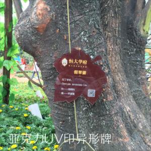 亚克力UV印异形树牌